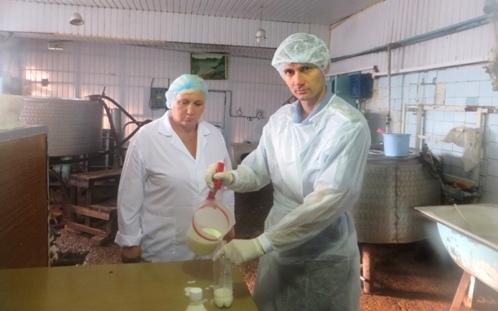 Среди разработчиков фальсифицированной «молочки» оренбургских компаний неоказалось
