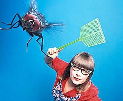 Как избавиться от мух на ферме