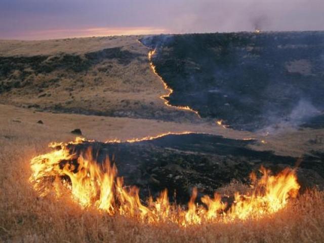 В регионе начата подготовка к предстоящему пожароопасному периоду