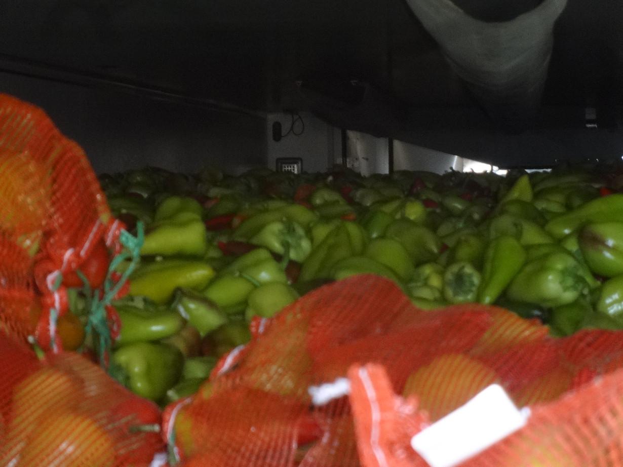 В Оренбуржье на границе развернули пять машин с продуктами из Казахстана и Киргизии