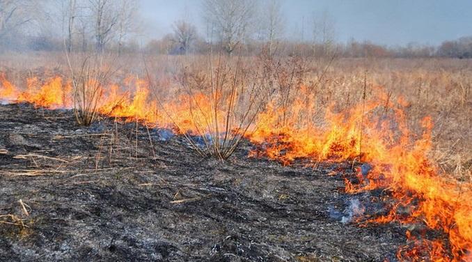 Под Соль-Илецком выгорело пять гектаров сухой травы