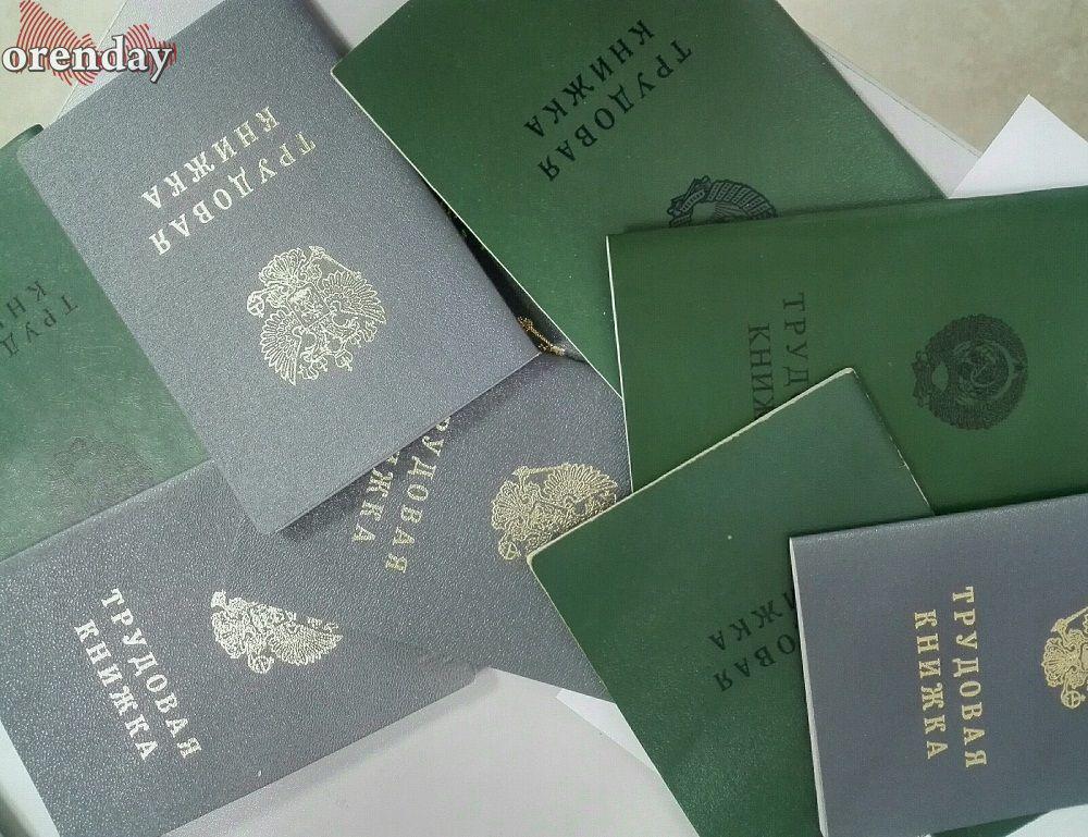 В Соль-Илецке сразу четверо мошенников незаконно получали пособие по безработице